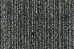 coral-line-60345